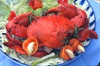 Seafood delicasies
